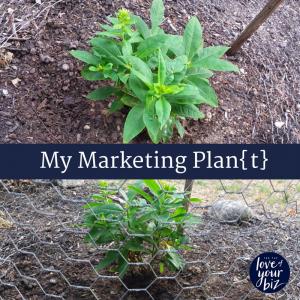 My Marketing Plan{t}